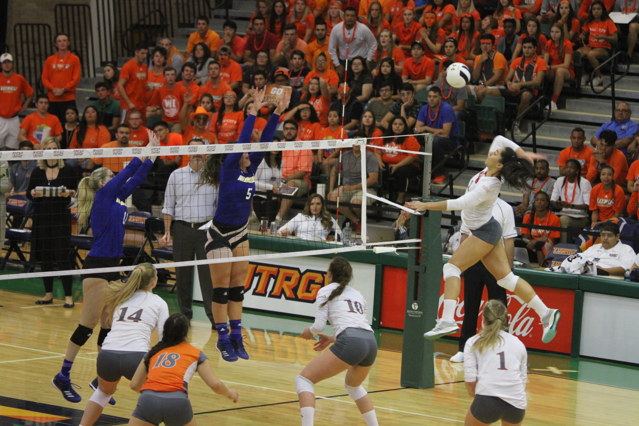 UTRGV outside hitter Barbara Silva elevates for a kill against California State University, Bakersfield in the WAC Tournament Championship match on Nov. 18 in the UTRGV Fieldhouse.
